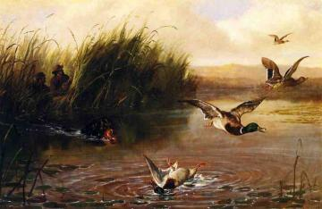 Duck Shooting Artwork by Arthur Fitzwilliam Tait