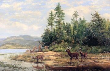 Long Lake Artwork by Arthur Fitzwilliam Tait