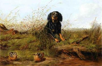 Cocker Spaniel and Woodcock Artwork by Arthur Fitzwilliam Tait