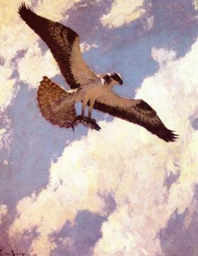 Osprey And Fish Artwork by Frank W. Benson