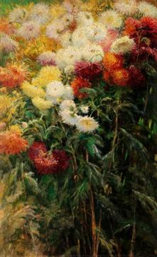 Chrysanthemums, Garden At Petit Gennevilliers Artwork by Gustave Caillebotte