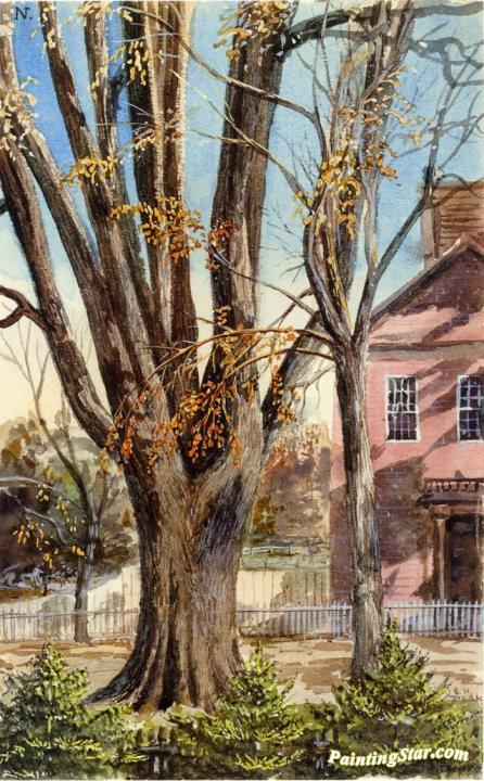 Elm, East Hartford, Connecticut Artwork by Charles De Wolf Brownell