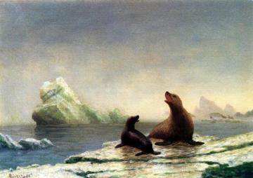 Seals Artwork by Albert Bierstadt