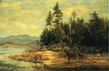 View on Long Lake Artwork by Arthur Fitzwilliam Tait