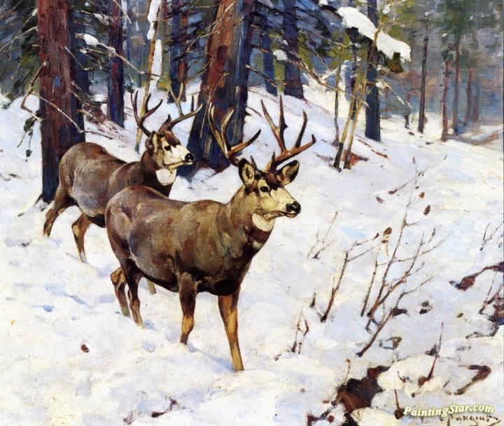 Mule Deer In The Woods Artwork By Carl Rungius Oil
