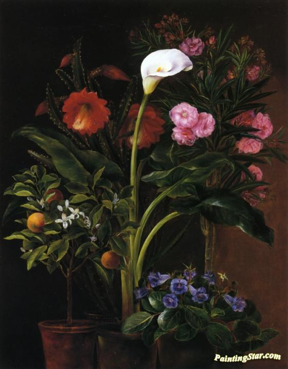 Still Life with Streptocarpus, Oleander, Calla Lily, Cactus Flowers and and Orange Tree Artwork by Louise Garlieb