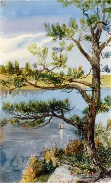 Tree and Sailboat, Lyme, Connecticut Artwork by Charles De Wolf Brownell