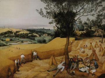 The Harvesters Artwork by Pieter Bruegel the Elder