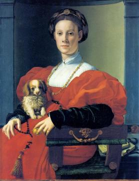 Portrait of a Lady in red with dog Artwork by Agnolo Bronzino