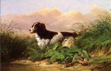 Setter and Woodcock Artwork by Arthur Fitzwilliam Tait