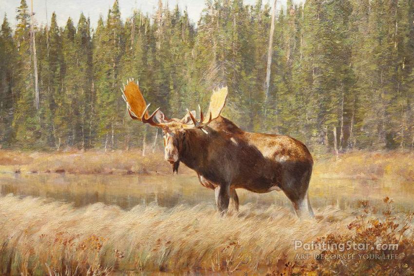 Bull Moose, Art Painting by Carl Rungius