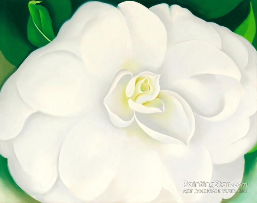 A White Camellia Artwork By Georgia O Keeffe Oil Painting Art